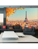 Fotomural NW8P PARIS 003