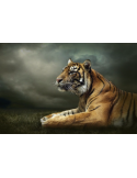 Fotomural Tigre FAN037, 190cm. x 126.7cm., Vinilo Autoadhesivo Mate, Todo Color, Invertir, 0x0x0x0 cm.
