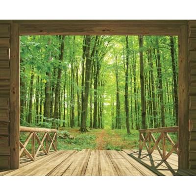 Fotomural WOODLAND FOREST