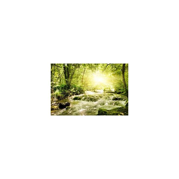Fotomural Paisaje con Rio FNA011, 200cm. x 230cm., Vinilo Autoadhesivo Mate, Todo Color, Invertir, 0x0x0x0 cm.