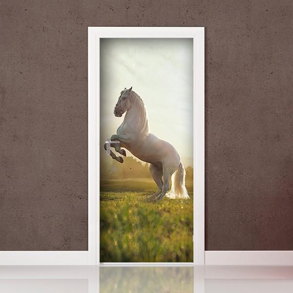Fotomural Porta P050