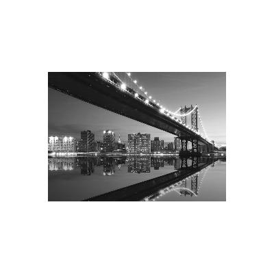 Fotomural NEW YORK NY17, 359.1cm. x 260cm., Papel Pintado, Blanco y Negro, Invertir, 0x0x0x0 cm.