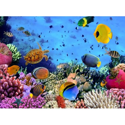 Fotomural W4PL SEA 001