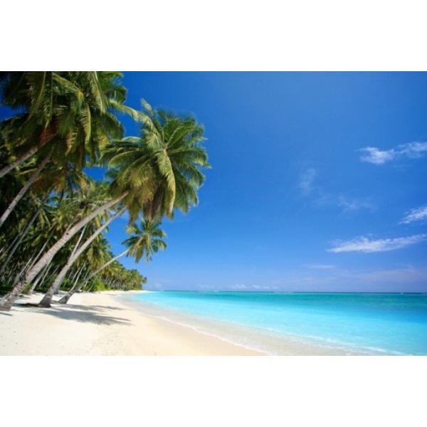 Fotomural Playa FPL013, 150cm. x 100cm., Vinilo Autoadhesivo Mate, Todo Color, Invertir, 0x0x0x0 cm.