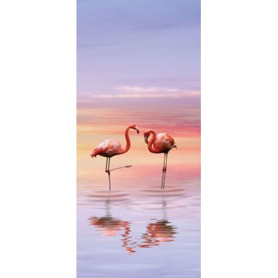 Fotomural Flamingo FTV1527
