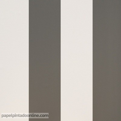 Paper pintat RATLLES 912