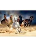 Fotomural HORSES