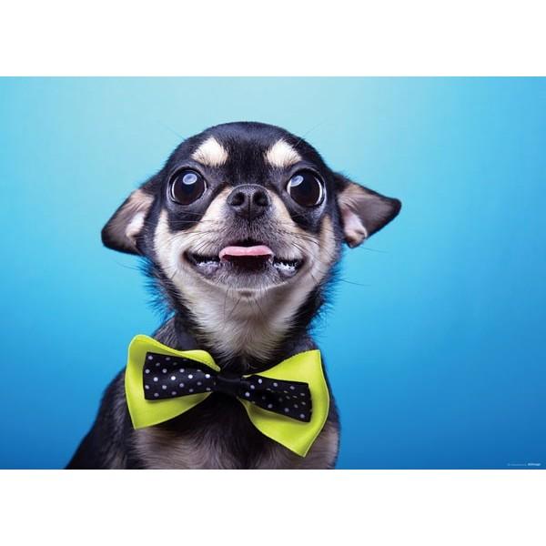 Fotomural DOG