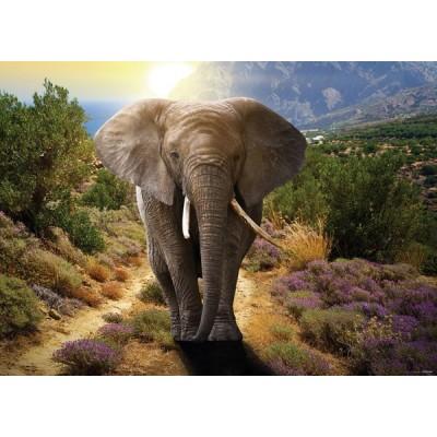 Fotomural ELEPHANT