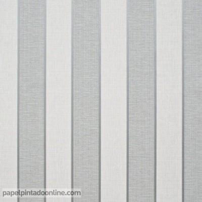 Paper pintat RATLLES 161C