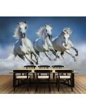 Fotomural ARABIAN HORSES