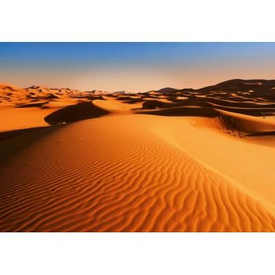 Fotomural DESERT LANDSCAPE