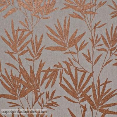 Paper pintat TEMPUS FI2206