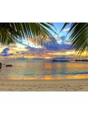 Fotomural Praia FPL005, 300cm. x 235cm., Vinilo Autoadhesivo Mate, Todo Color, Invertir, 32.23x0x32.23x0 cm.