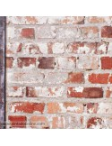 Papel de parede FREESTYLE 102540