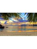 Fotomural Playa FPL005, 390cm. x 250cm., Vinilo Autoadhesivo Mate, Todo Color, Invertir, 0x0x0x0 cm.