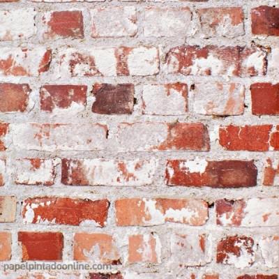 Papel de parede FREESTYLE 102538