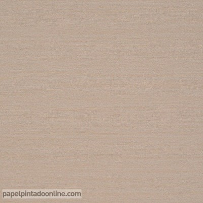 Papel de parede LISO TEXTURA MARROM CLARO SVA_1798_13_42