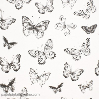Paper pintat PAPALLONES 955