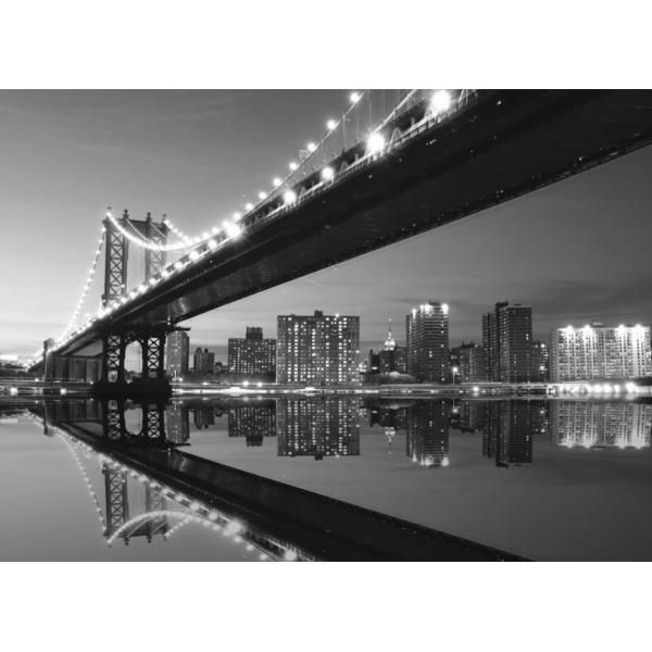 Fotomural NEW YORK NY17, 250cm. x 181cm., Papel Pintado, Blanco y Negro, Original, 0x0x0x0 cm.