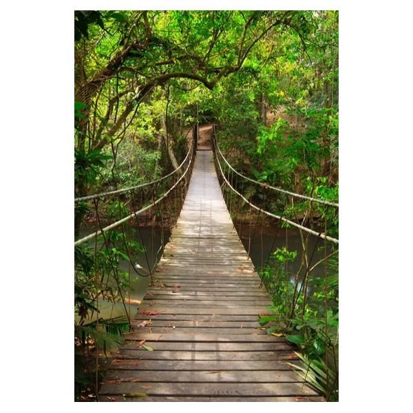 Fotomural Puente en la Selva FPR018, 178cm. x 264cm., Vinilo Autoadhesivo Mate, Todo Color, Original, 0x7.06x0x7.06 cm.