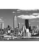 Fotomural NEW YORK NY02, 240cm. x 199cm., Papel Pintado, Blanco y Negro, Original, 0x0x0x0 cm.