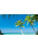 Fotomural Playa FPL008, 497cm. x 270cm., Vinilo Autoadhesivo Mate, Todo Color, Original, 0x39.78x0x39.78 cm.