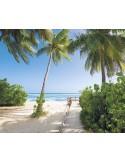 Fotomural PALMY BEACH SH088-VD3