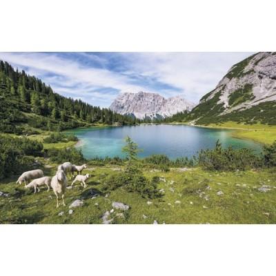 Fotomural PARADISE LAKE SH070-VD4