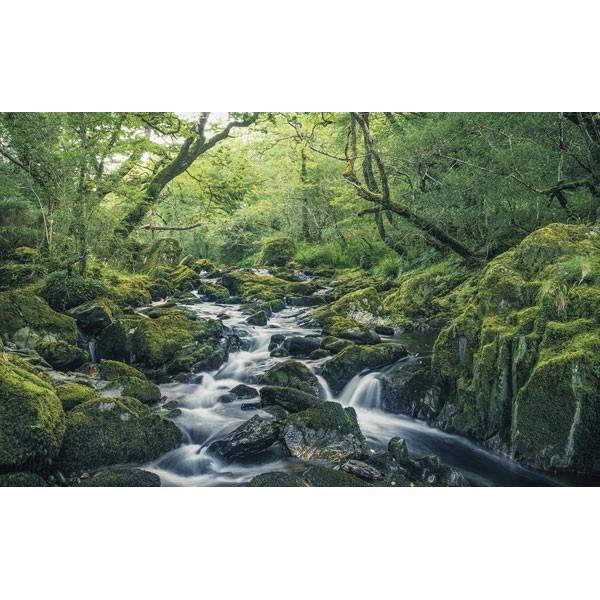 Fotomural GREEN TALES SH056-VD4