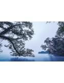 Fotomural BLUE WATERS SH082-VD4
