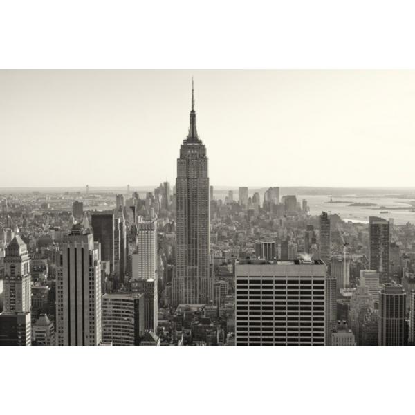 Fotomural New York City FLF008, 100cm. x 67cm., Vinilo Autoadhesivo Mate, Todo Color, Original, 0x0x0x0 cm.