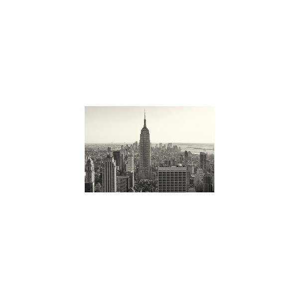 Fotomural New York City FLF008, 195cm. x 130cm., Vinilo Autoadhesivo Mate, Todo Color, Original, 0x0x0x0 cm.