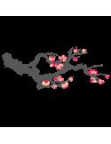 Vinil Decorativo Floral FL201, Mediano, Gris Oscuro 8288-01, Salmon Suave 8958-22, Magenta 8258-06, Invertir