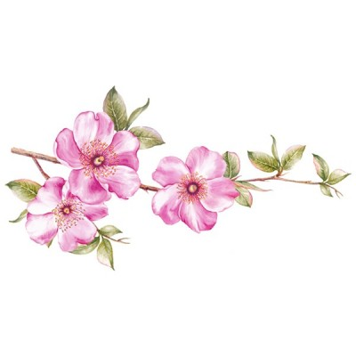 Vinilo Floral 1007