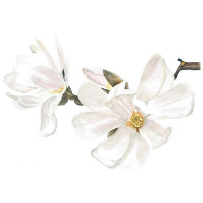Vinil Floral 1005