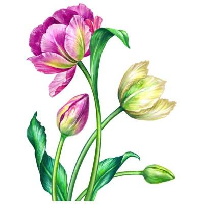 Vinilo Floral 1000