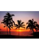 Fotomural HAWAII