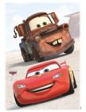 STICKER CARS FRIENDS 14015H