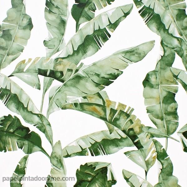 Paper pintat NATURALESA 037