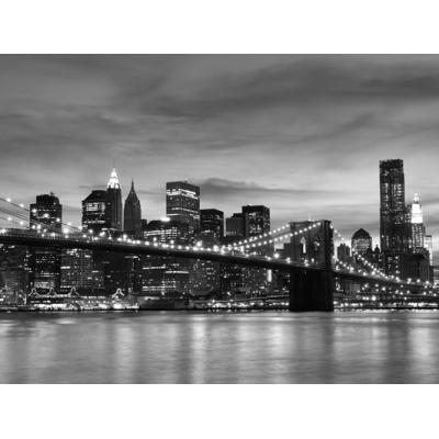 Fotomural Manhattan FLF016, 266cm. x 200cm., Vinilo Autoadhesivo Mate, Todo Color, Original, 15.07x0x15.07x0 cm.