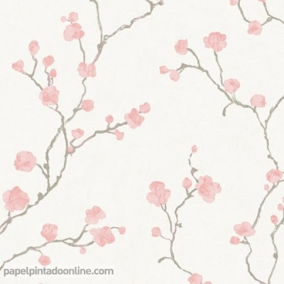 Paper pintat NATSU NATS_8214_42_22