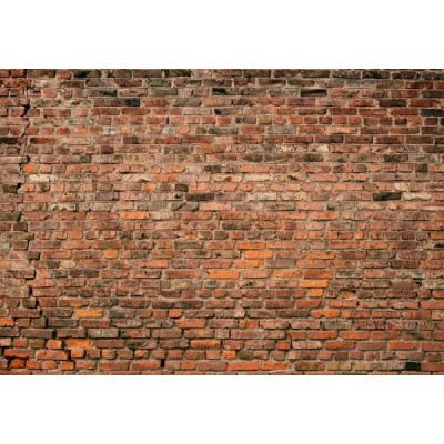 Fotomural BRICK WALL RED