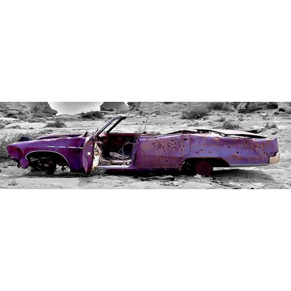 Fotomural Panorâmico Carro abandonado OP-51001