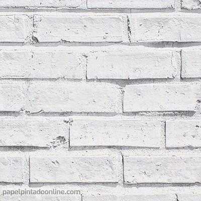 Paper pintat OPTIONS 2 623004