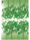 STICKER GREEN BRISTLEGRASS DP-08158