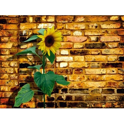 Fotomural SUNFLOWER ON BRICKS