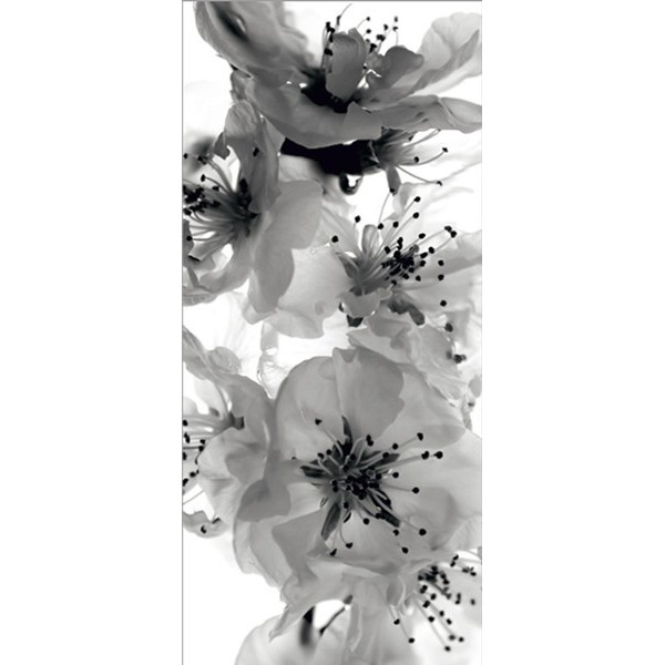 Fotomural BLACK AND WHITE FLOWERS FT-0221