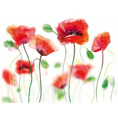 Fotomural POPPIES IN WATE COLOURS FT-0197