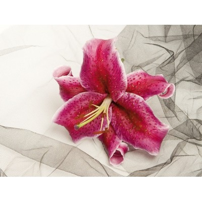 Fotomural LILY RED FT-0112